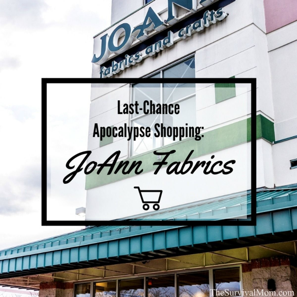 Last-Chance Apocalypse Shopping: JoAnn Fabrics & Crafts