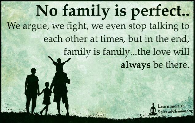 No Perfect Family Quotes And Sayings Family Quotes Quotes
