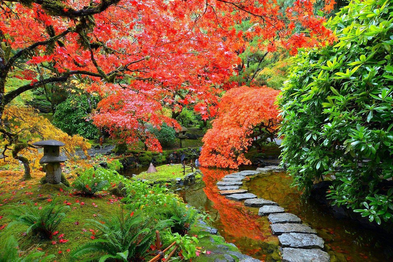 Imagenes de los jardines butchart en canad para fondo de for Vater japones