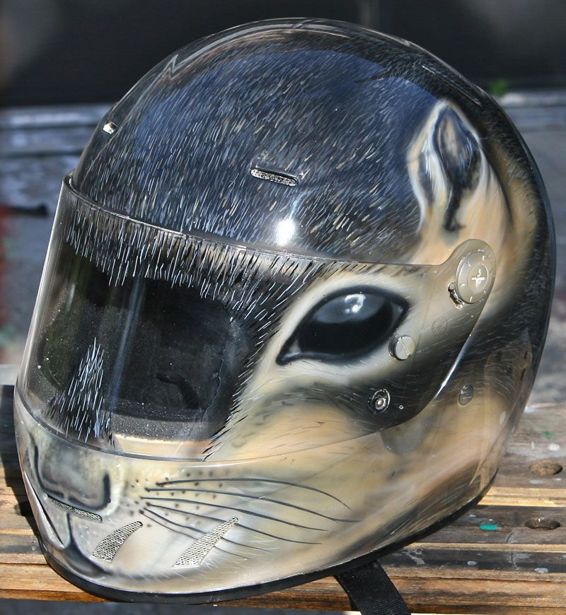 squirrel airbrushed helmet motorrad pinterest