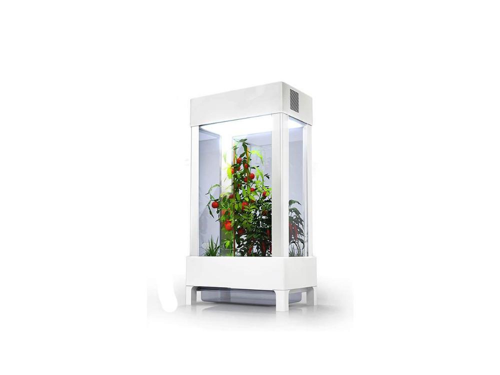 The Niwa One Standard Indoor Smart Garden Smart Garden 400 x 300