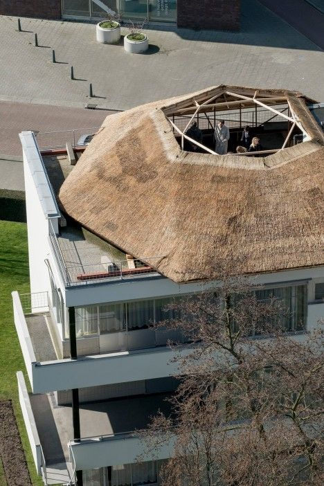thatched observatory on the roof - Santiago Borja