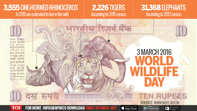 Infographic: WORLD WILDLIFE DAY - Times of India