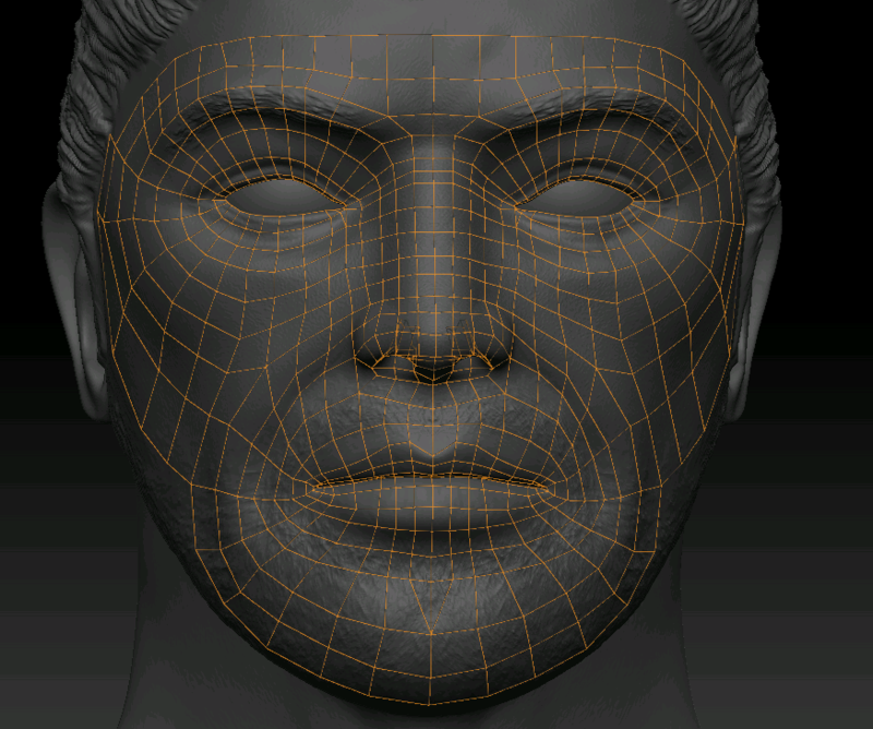 Facial-wireframe