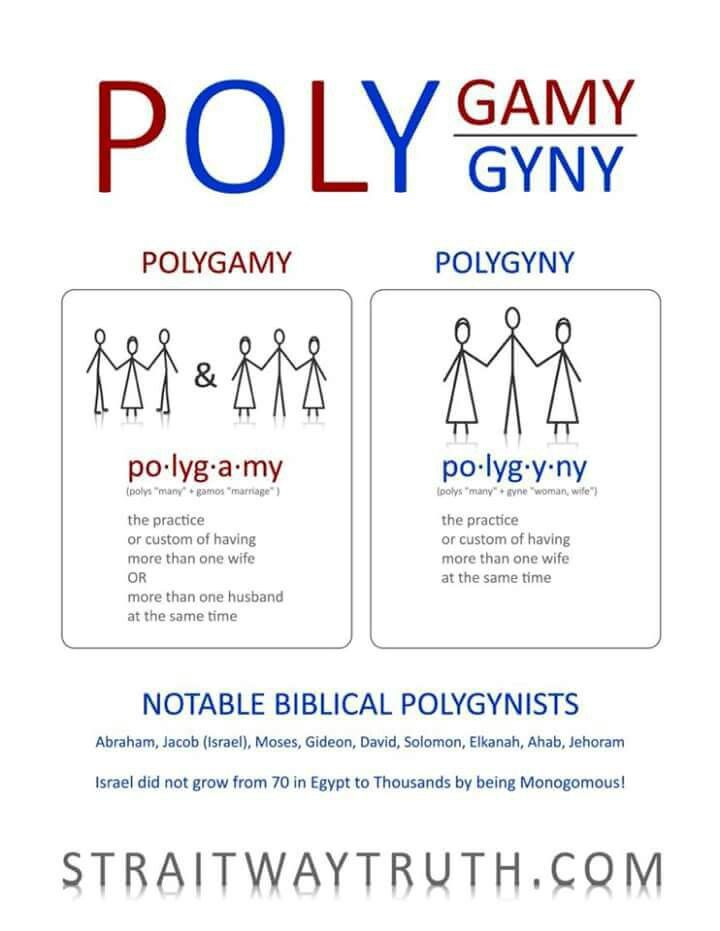 Polygamist dating definition relationship