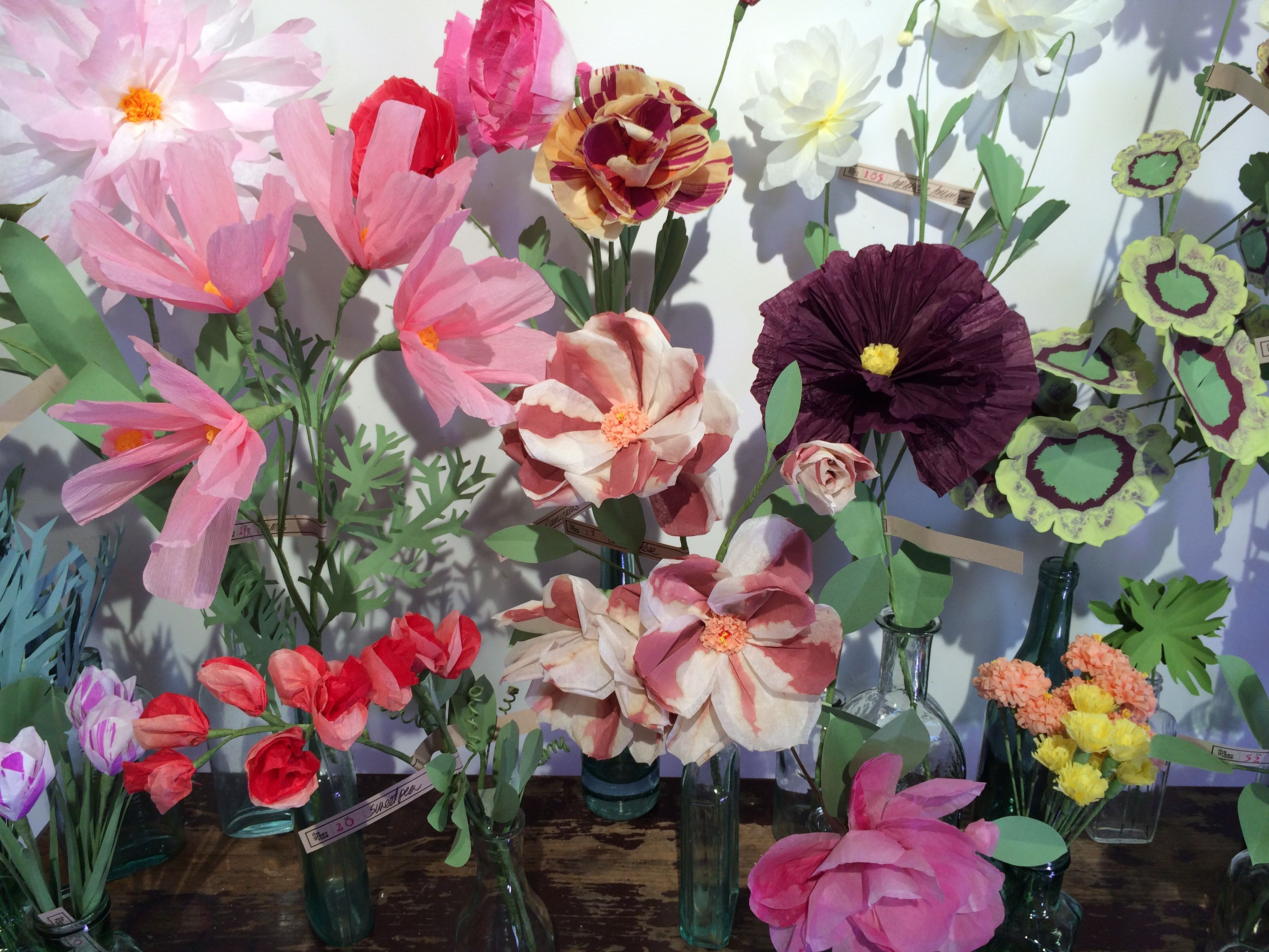 Tatoural Of Livia Cetti Paper Flowers Google Search Cfg Likes