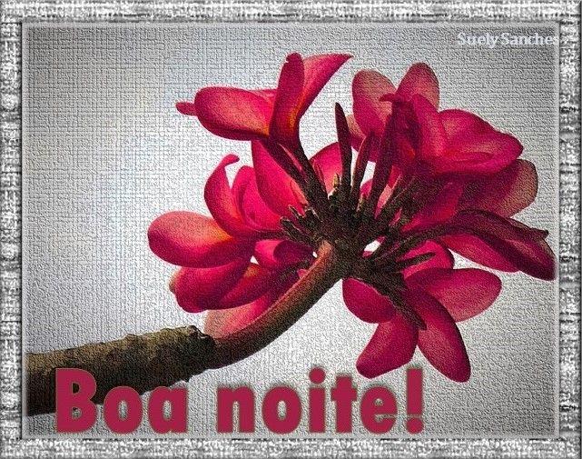 Imagens De Bom Dia E Boa Noite: Pin De SUELY SANCHES Em MENSAGENS