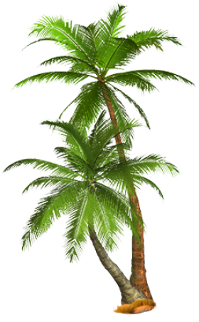 Imgur The Most Awesome Images On The Internet Palm Tree Art Palm Tree Png Tree Drawing