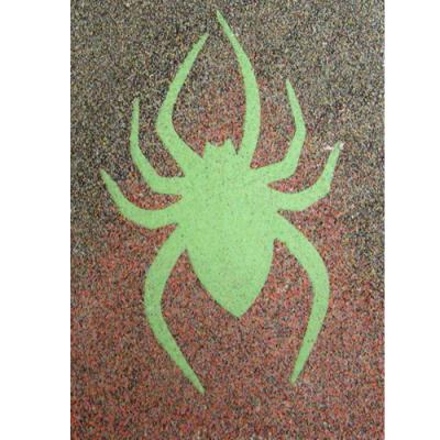 Sand Art Canvas - SPIDER