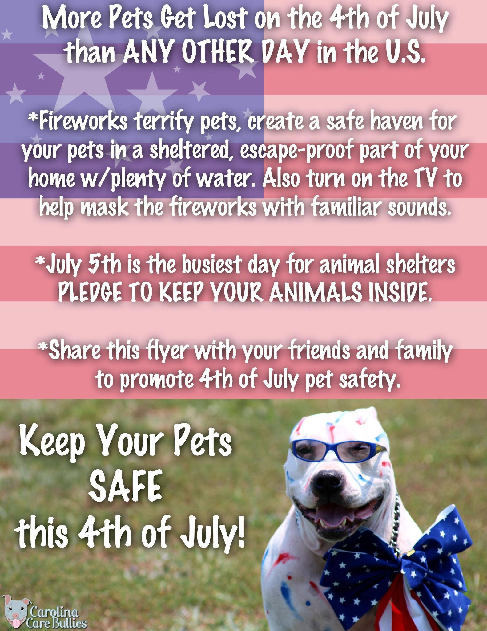 Keep Your Pets Safe On The 4th Losing A Pet Find Pets Pet Safe
