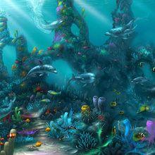 Wall mural - Dolphin Paradise