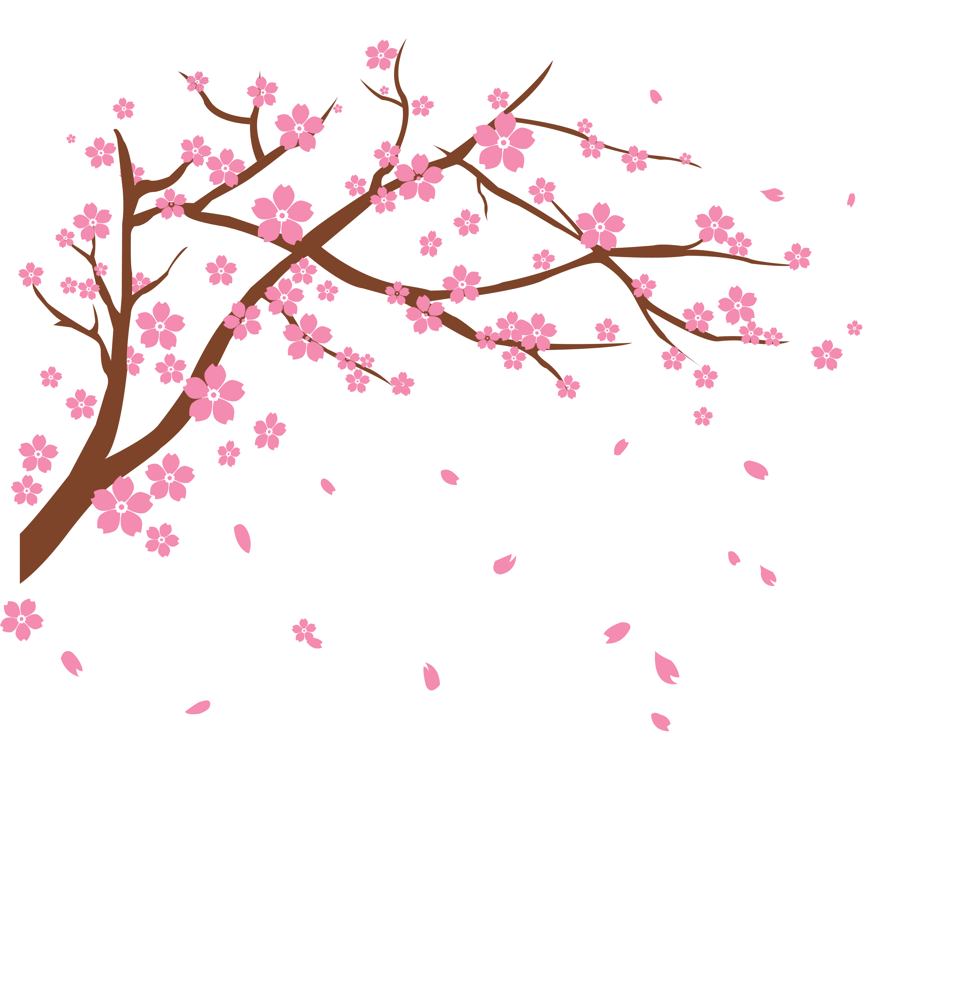 Cherry Tree Branch Picture Royalty Free Download Cherry Blossom Art Cherry Blossom Drawing Cherry Blossom