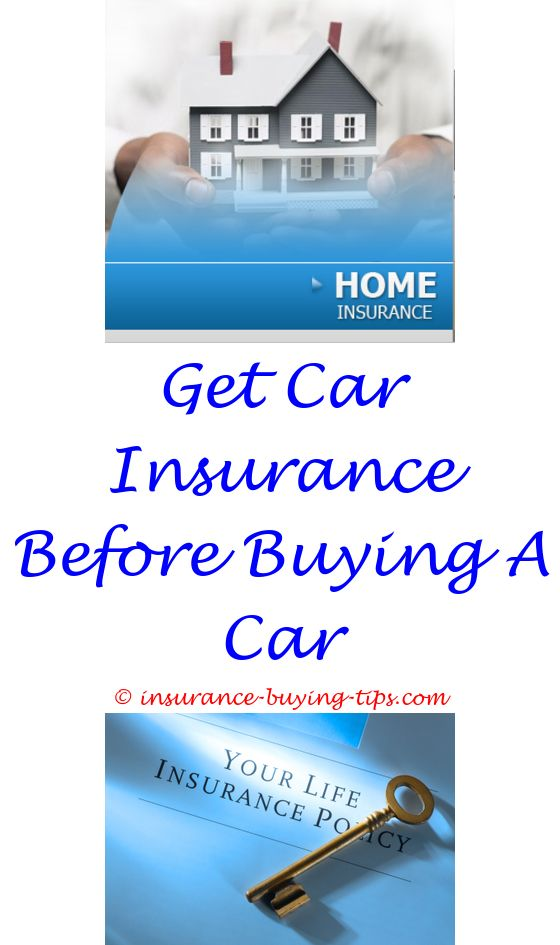 Progressive Auto Insurance Quote Guide To Buying Car Insurance  Buy Dental Insurance With Kaiser .