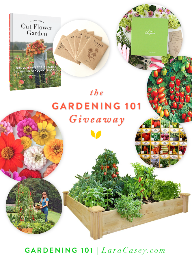 Gardening 101 Home Vegetable Garden, What To Get Someone Who Loves Gardening