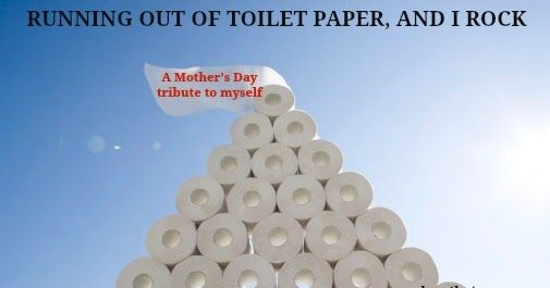 I Am The Person Who Notices We Are Running Out Of Toilet