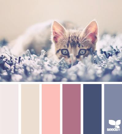 Color scheme...