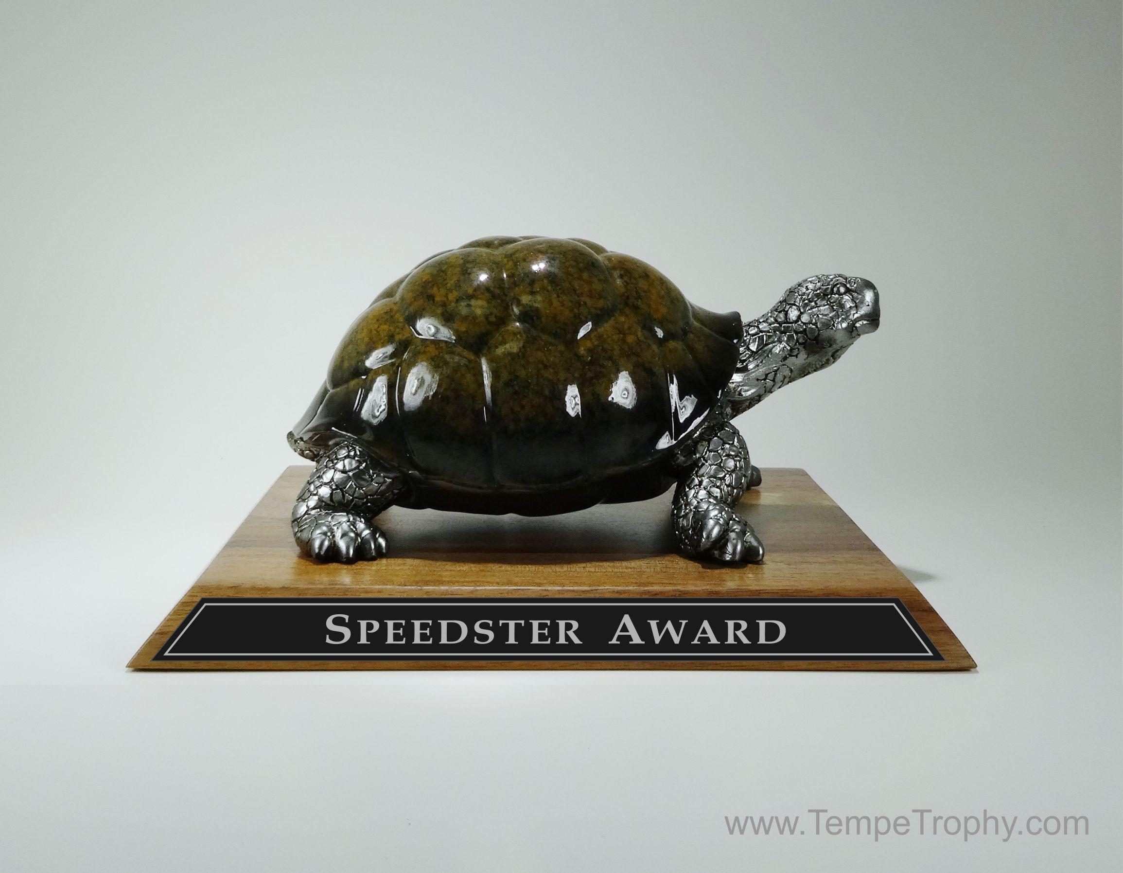 Turtle Trophy The Speedster Award Www Engravablez Com Trophy Turtle Awards Trophy