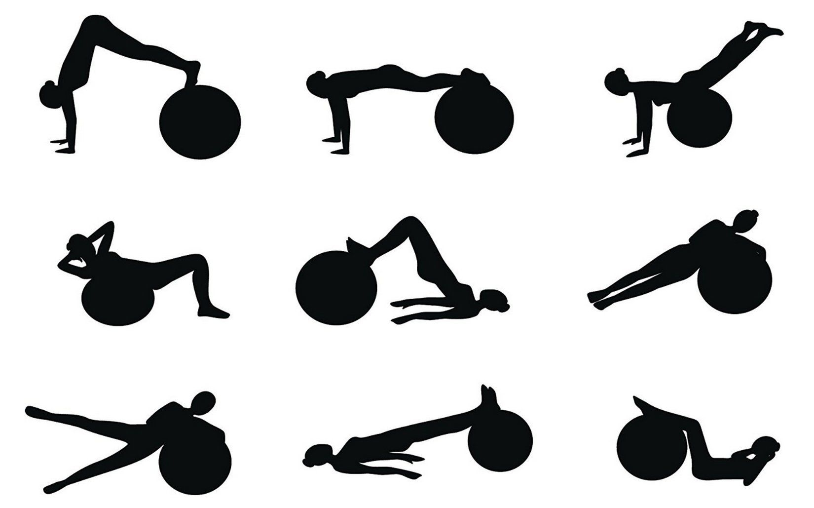 DHSUIU Fitness Exercise Stability and Yoga Ball with Pump