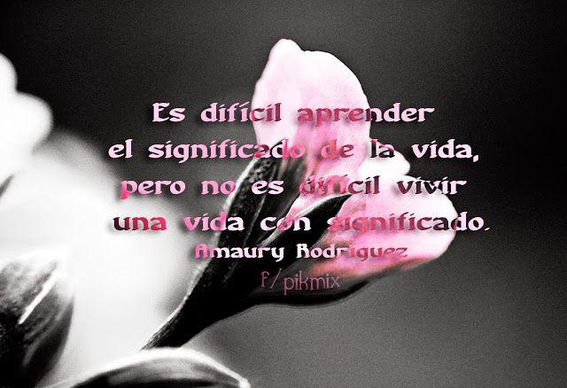 El significado de la vida ● Amaury Gutierrez