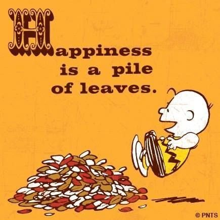 Happiness Is A Pile Of Leaves Quote Cartoon Autumn Leaves Charlie Brown Fall Peanuts Pile Snoopy Charlie Brown Charlie Brown Peanuts