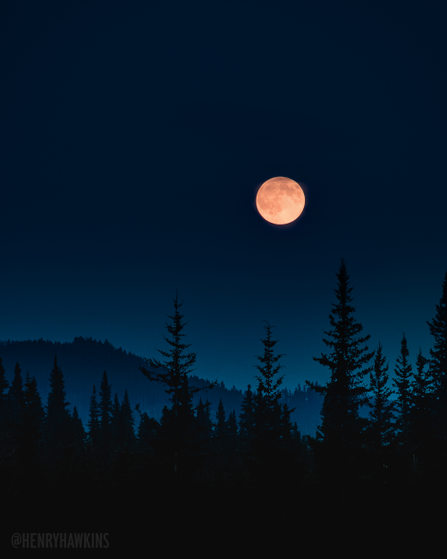 Log In Tumblr Red Aesthetic Red Wallpaper Red Moon