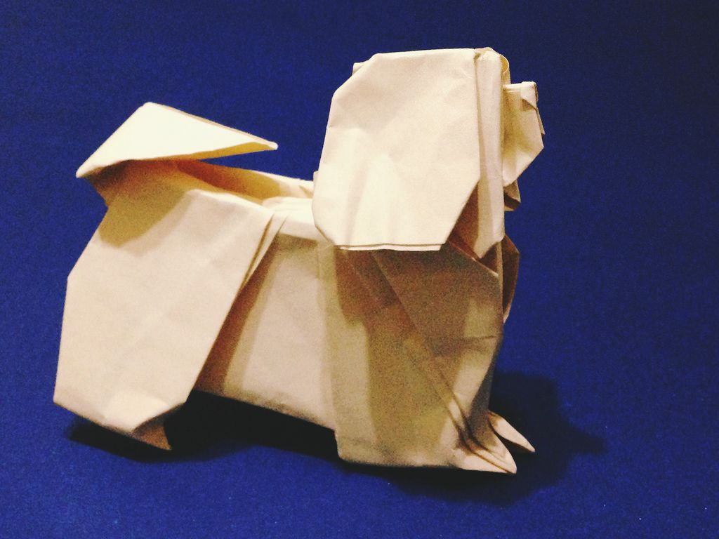 Lhasa Apso Learn Origami Pinterest And Animals Dachshund Paper Folding Diagram By Steven Casey Flickr This Is In An Album With Other Dog Breeds Great Work