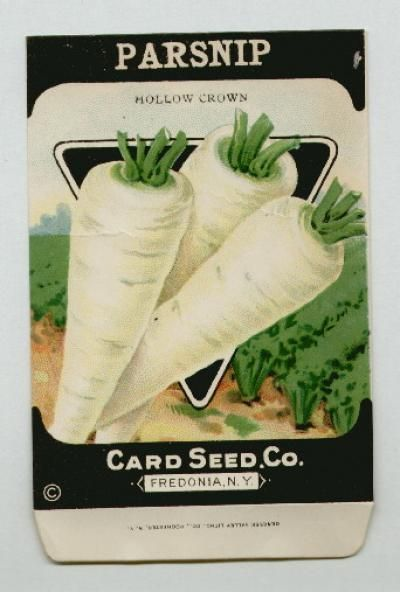 Antique Card Seed Company Parsnip