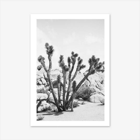 Cactus print desert print desert decor nature prints black and white succulent and cacti desert landscape rustic home decor wall art