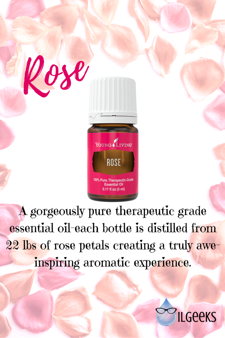 Young Living Rose Essential Oil Adventures In Essential Oils