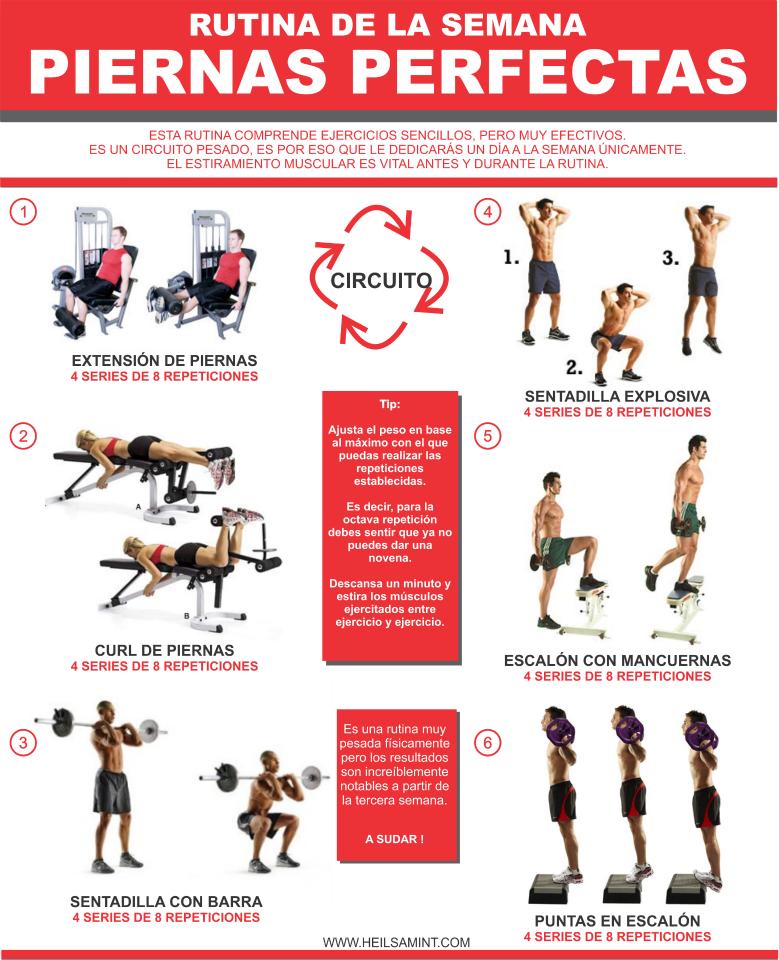 Rutina para pierna ejercicio pinterest gym workout for Posters para gimnasios