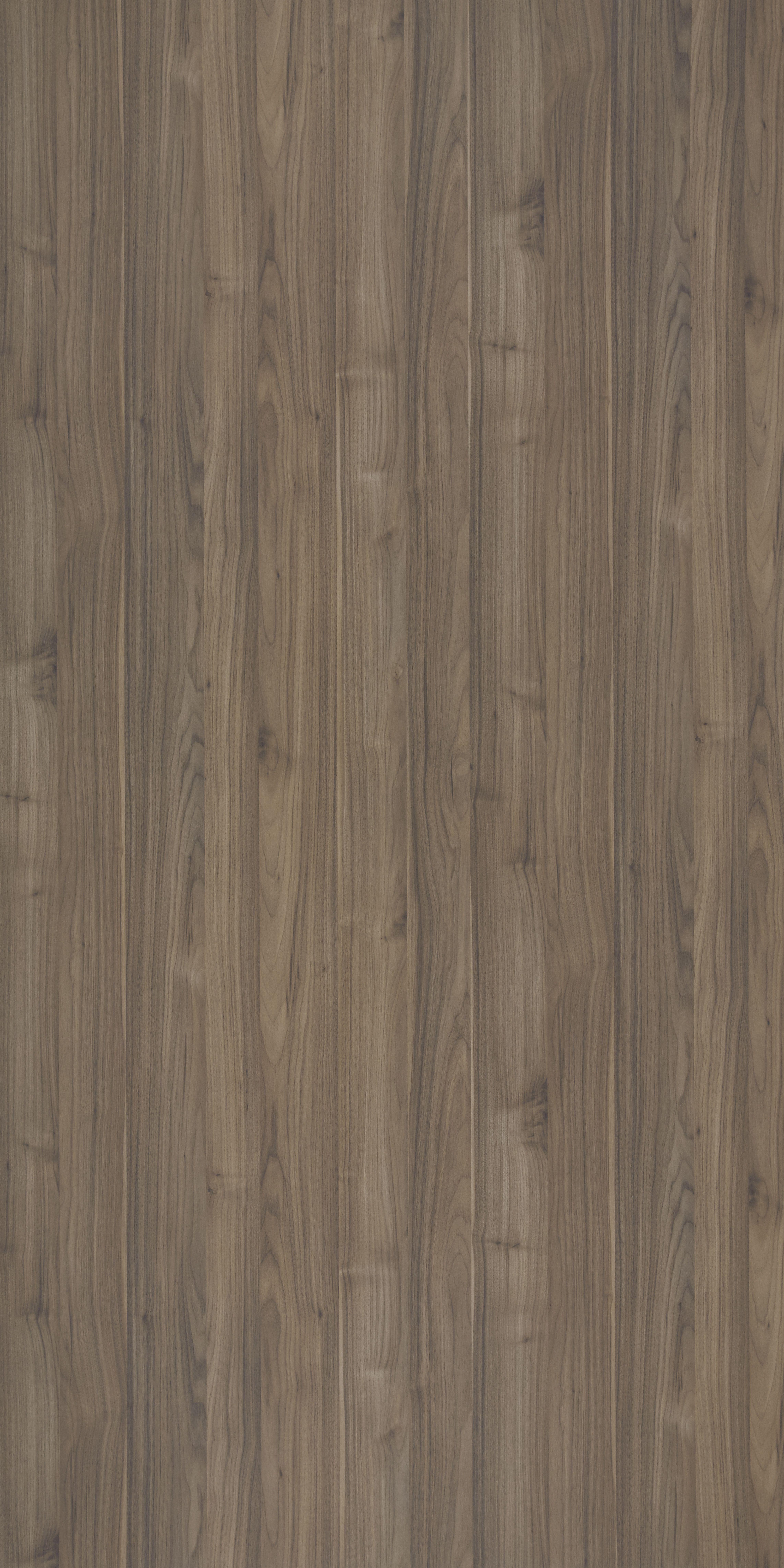 EDLDWE9004LVirginiaWalnut (With images) Walnut wood