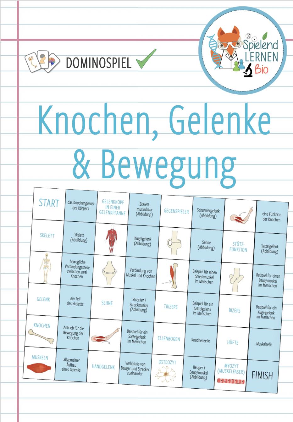 Knochen, Gelenke & Bewegung   Dominospiel – Unterrichtsmaterial im ...