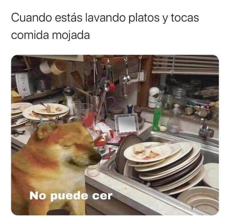 Xdxddxdx Memes De Maestros Memes Divertidos Memes En Espanol