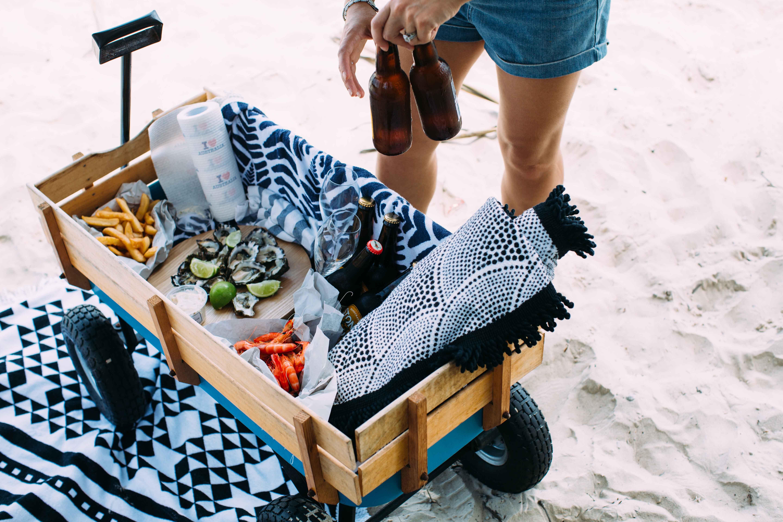 wagon beach picnic   Beach And Coastal 2   Beach cart, The