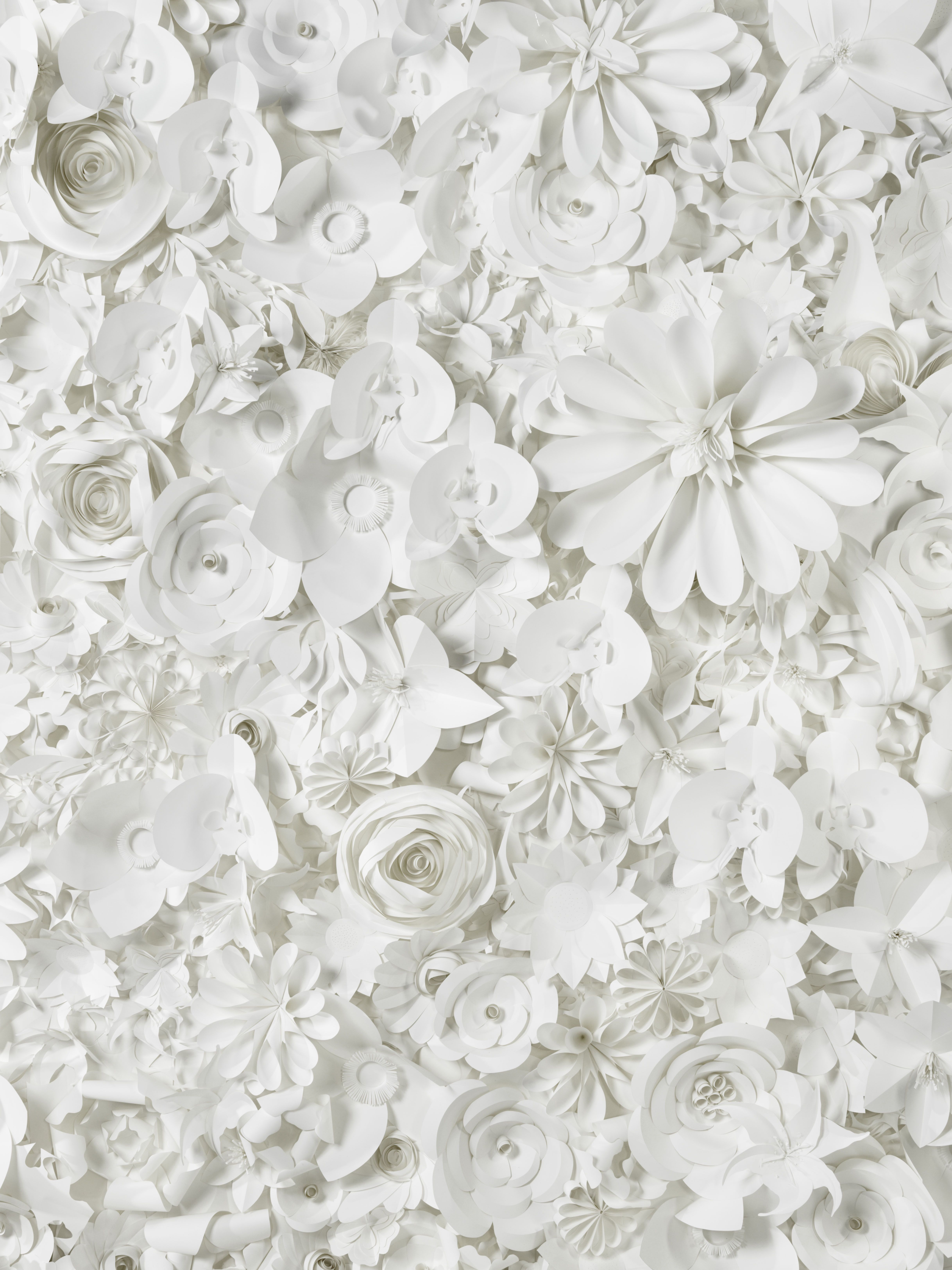 Flowerwall1 Flower wall Toile de fond fleuri en papier