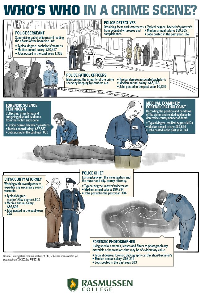 csi simplified your visual guide to crime scene jobs infographic - Description Of A Crime Scene Investigator