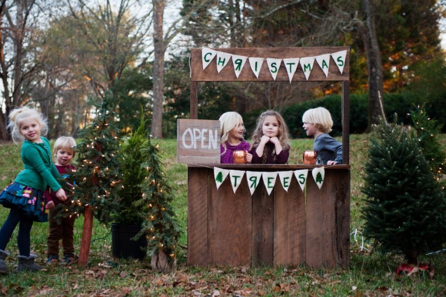Millers Christmas Tree Farm.The Lmp Christmas Tree Farm Lauren Miller Photography