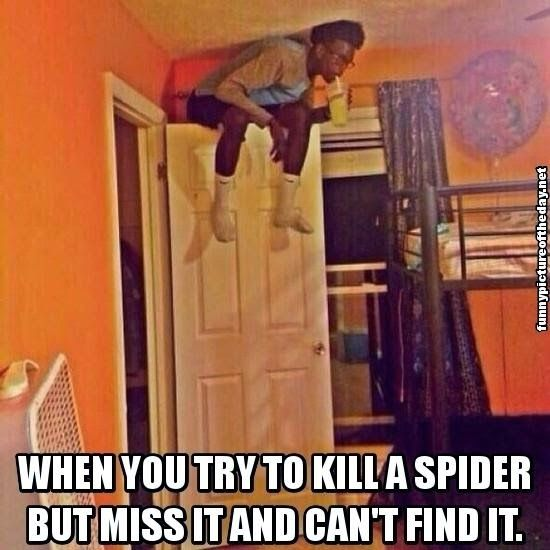 Funny Picture Of The Day Official Site June 5th 2014 3pm Funny Pictures Really Funny Funny