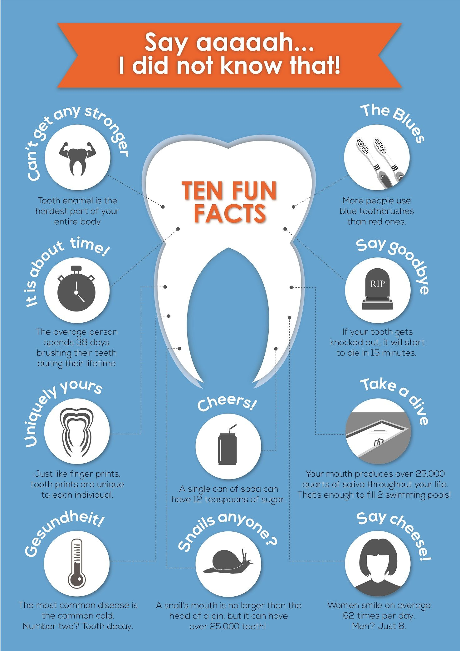 10 interesting facts about your teeth infographix directory