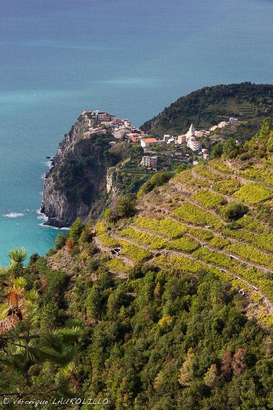 Corniglia (La Spezia), Cinque Terre, Liguria, Italy