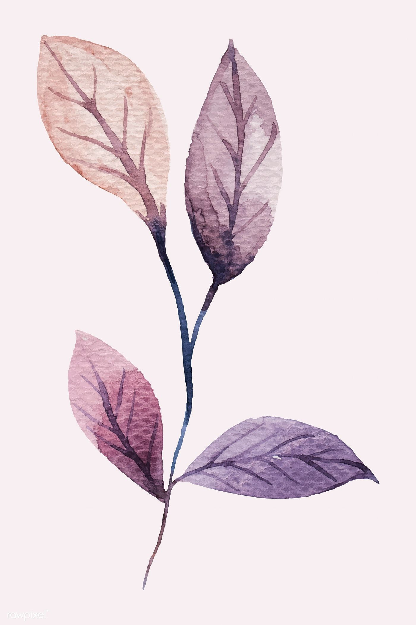 Download Premium Vector Of Hand Painted Purple Watercolor Leaf Vector