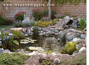 Merveilleux Backyard Pond With Waterfall Photos | How To Build A Pond, Backyard  Waterfalls, Waterscapes