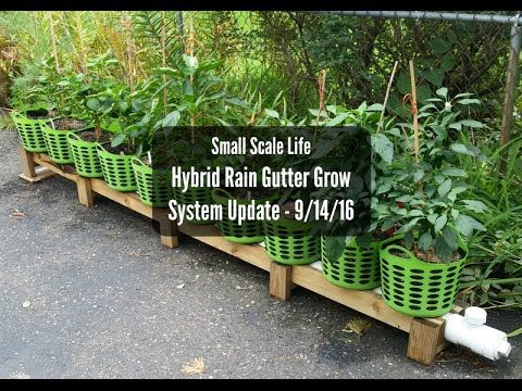 Hybrid Rain Gutter Grow System Update 9 14 16 Youtube I Would Like To Try This System Grow System Rain Gutters Growing