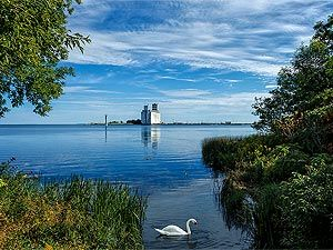 The town of #Collingwood holds a strong appeal for residents who enjoy the amenities of an urban city lifestyle while still having access to the natural beauty and waterfront.