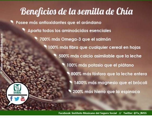 Beneficios de la semilla de chia.