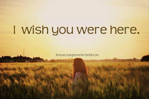 Wish You Were Here Quotes Awesome Wish You Were Here Quotes  Funny Quotes Contact Dmca Joy
