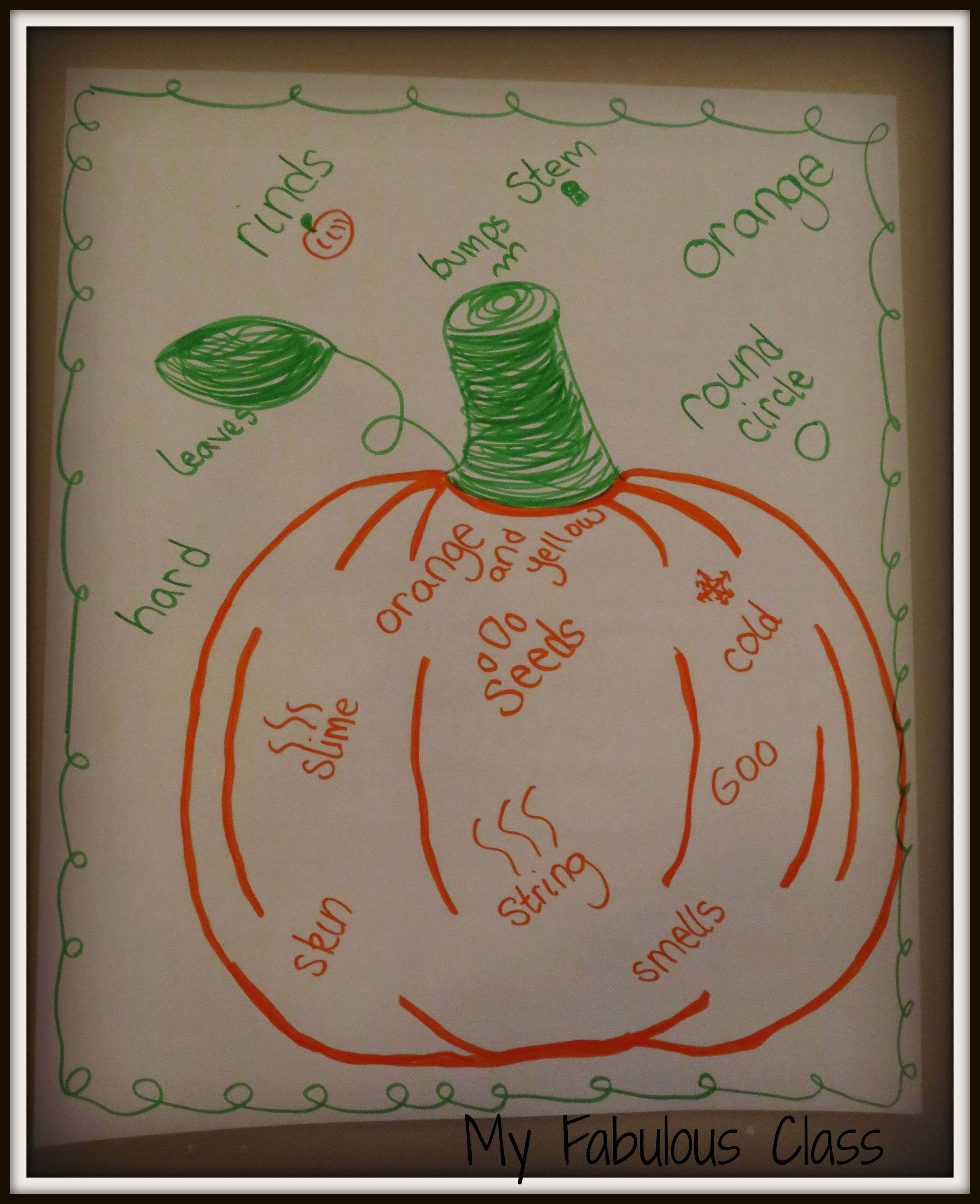 Describe The Inside And Outside Of A Pumpkin Anchor Chart