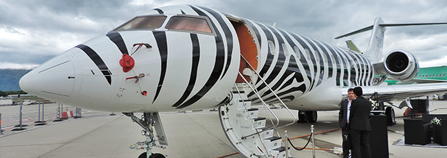 07 Cf Africa 650x230 Png 650 230 Private Jet Paint Job Freeborn