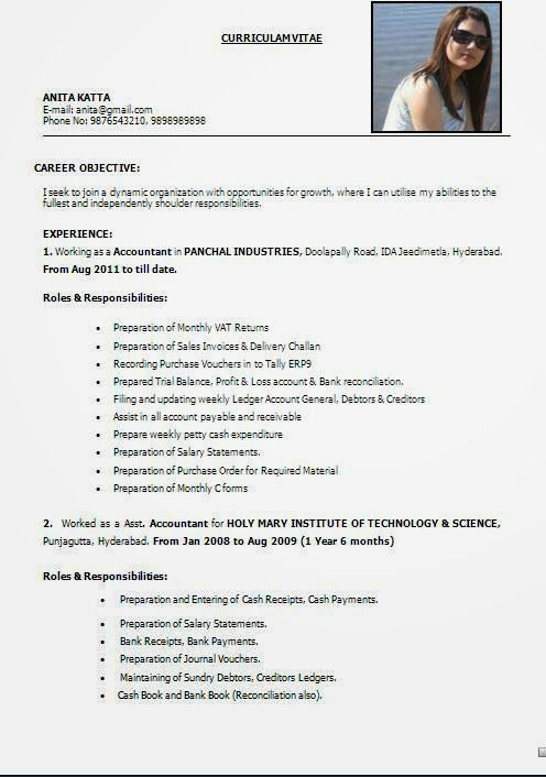 best it cv Sample Template Example ofExcellent Curriculum Vitae - cash accountant sample resume
