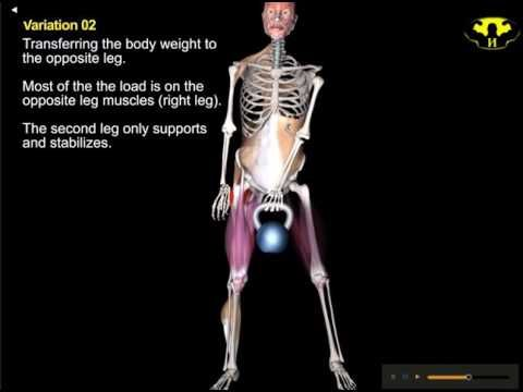 Skeletal and Muscular Anatomy of One Arm Kettlebell Swing ...